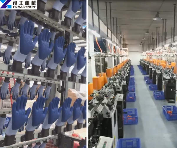 Labor Production Gloves Plant Display
