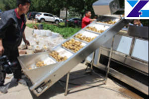 potato fries lift feeding machine